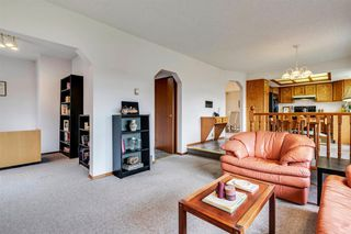 Photo 22: 16 Douglas Woods View SE in Calgary: Douglasdale/Glen Detached for sale : MLS®# A1041640