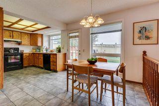 Photo 15: 16 Douglas Woods View SE in Calgary: Douglasdale/Glen Detached for sale : MLS®# A1041640