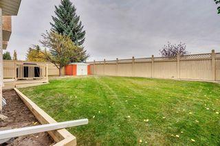 Photo 39: 16 Douglas Woods View SE in Calgary: Douglasdale/Glen Detached for sale : MLS®# A1041640