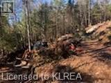 Photo 6: 1372 LAKE LORRAINE Road in Tory Hill: Vacant Land for sale : MLS®# 40052884