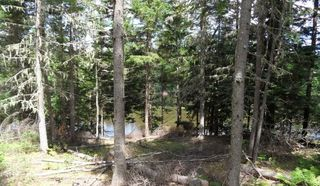 Photo 10: LOT 07-8 Lot07-8 KERRS MILLS Road in Wallace River West: 103-Malagash, Wentworth Vacant Land for sale (Northern Region)  : MLS®# 5161969