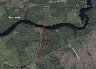Photo 3: LOT 07-8 Lot07-8 KERRS MILLS Road in Wallace River West: 103-Malagash, Wentworth Vacant Land for sale (Northern Region)  : MLS®# 5161969