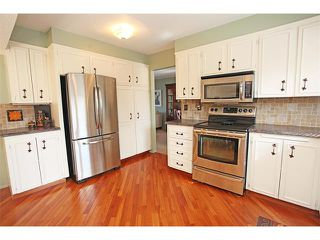 Photo 21: 124 LAKE MEAD Drive SE in Calgary: Lk Bonavista Estates House for sale : MLS®# C4005095