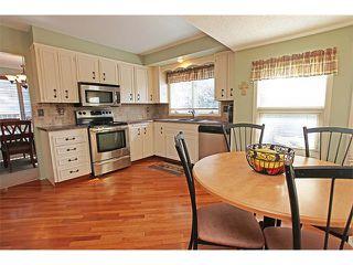 Photo 18: 124 LAKE MEAD Drive SE in Calgary: Lk Bonavista Estates House for sale : MLS®# C4005095