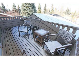 Photo 29: 124 LAKE MEAD Drive SE in Calgary: Lk Bonavista Estates House for sale : MLS®# C4005095