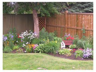 Photo 44: 124 LAKE MEAD Drive SE in Calgary: Lk Bonavista Estates House for sale : MLS®# C4005095