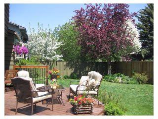 Photo 45: 124 LAKE MEAD Drive SE in Calgary: Lk Bonavista Estates House for sale : MLS®# C4005095