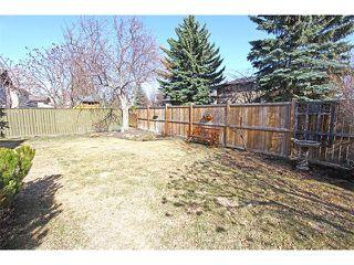 Photo 48: 124 LAKE MEAD Drive SE in Calgary: Lk Bonavista Estates House for sale : MLS®# C4005095