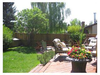 Photo 43: 124 LAKE MEAD Drive SE in Calgary: Lk Bonavista Estates House for sale : MLS®# C4005095