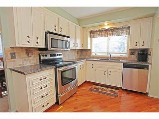 Photo 20: 124 LAKE MEAD Drive SE in Calgary: Lk Bonavista Estates House for sale : MLS®# C4005095