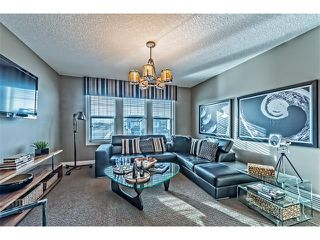 Photo 30: 64 Rainbow Falls Boulevard: Chestermere House  : MLS®# C4036791