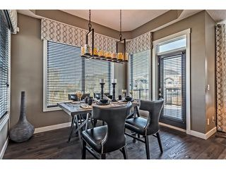 Photo 15: 64 Rainbow Falls Boulevard: Chestermere House  : MLS®# C4036791