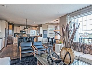 Photo 6: 64 Rainbow Falls Boulevard: Chestermere House  : MLS®# C4036791