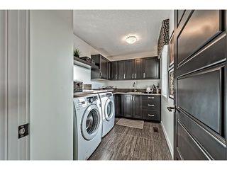 Photo 32: 64 Rainbow Falls Boulevard: Chestermere House  : MLS®# C4036791