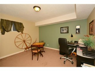 Photo 26: 2038 LUXSTONE Link SW: Airdrie House for sale : MLS®# C4048604