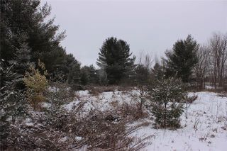 Photo 12: Lot 22 Maritime Road in Kawartha Lakes: Coboconk Property for sale : MLS®# X3413160