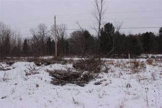 Photo 11: Lot 22 Maritime Road in Kawartha Lakes: Coboconk Property for sale : MLS®# X3413160