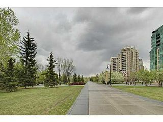 Photo 14: 460 8 Street SW in Calgary: Single Level Apartment for sale : MLS®# C3571101