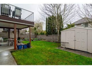 "Photo 19: 22319 50 Avenue in Langley: Murrayville House for sale in ""UPPER MURRAYVILLE"" : MLS®# R2154621"