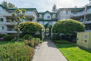 """Photo 1: 329 2750 FAIRLANE Street in Abbotsford: Central Abbotsford Condo for sale in """"The Fairlane"""" : MLS®# R2171931"""