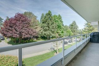 """Photo 19: 329 2750 FAIRLANE Street in Abbotsford: Central Abbotsford Condo for sale in """"The Fairlane"""" : MLS®# R2171931"""