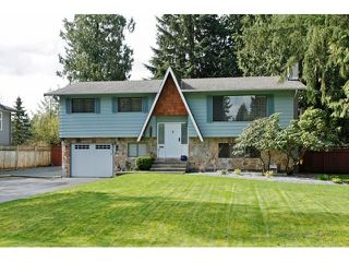 Photo 1: 3769 206A Street in Langley: Home for sale : MLS®# F1436312