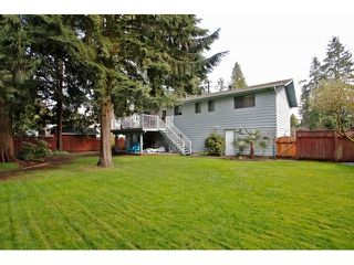 Photo 19: 3769 206A Street in Langley: Home for sale : MLS®# F1436312