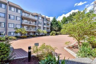 "Photo 20: 223 12101 80 Avenue in Surrey: Queen Mary Park Surrey Condo for sale in ""Surrey Town Manor"" : MLS®# R2177547"