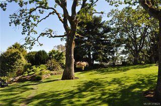 Photo 17: 504 2910 Cook St in VICTORIA: Vi Hillside Condo Apartment for sale (Victoria)  : MLS®# 762527