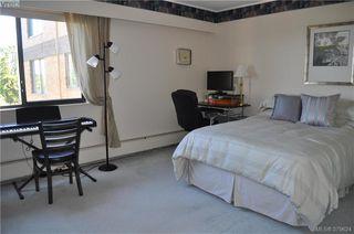 Photo 12: 504 2910 Cook Street in VICTORIA: Vi Hillside Condo Apartment for sale (Victoria)  : MLS®# 379624