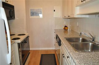 Photo 16: 504 2910 Cook St in VICTORIA: Vi Hillside Condo for sale (Victoria)  : MLS®# 762527