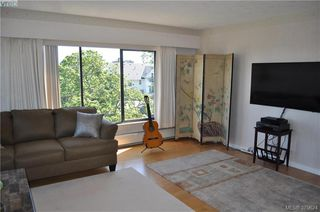 Photo 9: 504 2910 Cook St in VICTORIA: Vi Hillside Condo for sale (Victoria)  : MLS®# 762527