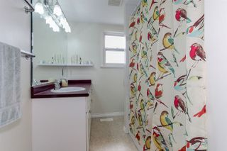 """Photo 11: 4856 43 Avenue in Delta: Ladner Elementary House for sale in """"LADNER ELEMENTARY"""" (Ladner)  : MLS®# R2204529"""