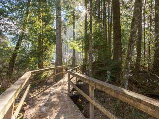 "Photo 19: 38648 CHERRY Drive in Squamish: Valleycliffe House for sale in ""Raven's Plateau"" : MLS®# R2205403"