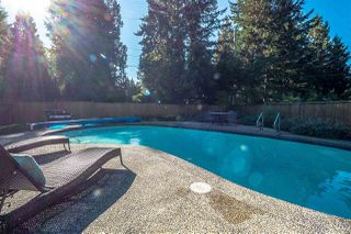 Photo 12: 5407 GREENTREE ROAD in West Vancouver: Caulfeild House for sale : MLS®# R2212648