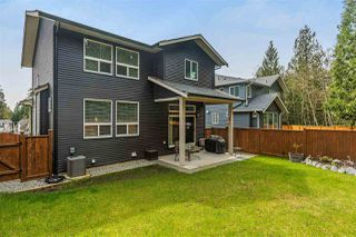 "Photo 19: 24291 112B Avenue in Maple Ridge: Cottonwood MR House for sale in ""MONTGOMERY ACRES"" : MLS®# R2255939"