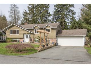 Photo 2: 12387 MOODY Street in Maple Ridge: West Central House for sale : MLS®# R2258400