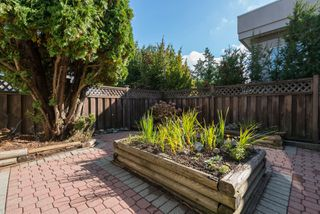 Photo 22: 15335 COLUMBIA Avenue: White Rock House for sale (South Surrey White Rock)  : MLS®# R2309099