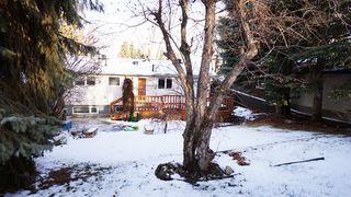 Photo 18: 13 BERNARD Drive: St. Albert House for sale : MLS®# E4136682