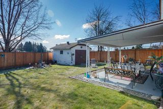 Photo 19: 9170 132B Street in Surrey: Queen Mary Park Surrey House for sale : MLS®# R2347172
