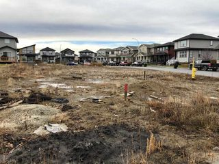 Main Photo: 58 HUDSON Cove: Spruce Grove Vacant Lot for sale : MLS®# E4152259