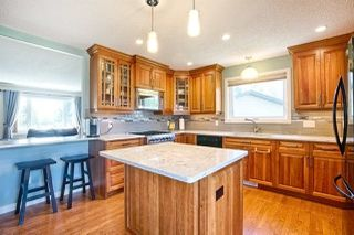 Photo 9: 433 53310 RGE RD 221: Rural Strathcona County House for sale : MLS®# E4156683