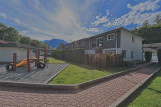 Photo 19: 36 2401 MAMQUAM Road in Squamish: Garibaldi Highlands Townhouse for sale : MLS®# R2371701