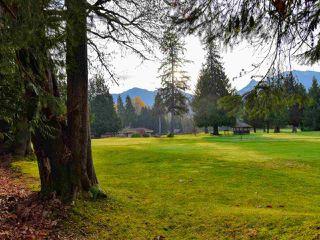 Photo 20: 36 2401 MAMQUAM Road in Squamish: Garibaldi Highlands Townhouse for sale : MLS®# R2371701