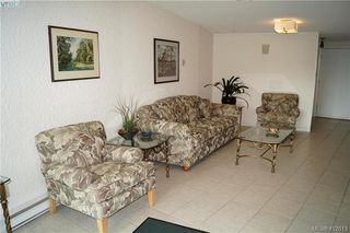 Photo 4: 215 3962 CEDAR HILL Road in VICTORIA: SE Mt Doug Condo Apartment for sale (Saanich East)  : MLS®# 412613