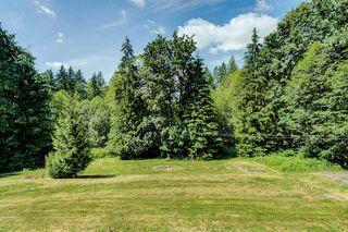 Photo 13: 26661 FERGUSON Avenue in Maple Ridge: Thornhill MR House for sale : MLS®# R2400379