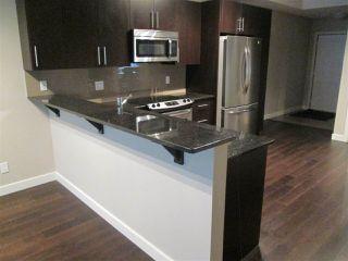 Photo 1: 205 10811 72 Avenue in Edmonton: Zone 15 Condo for sale : MLS®# E4178395
