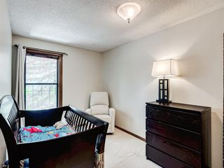 Photo 30: 227 COACH SIDE Road SW in Calgary: Coach Hill Detached for sale : MLS®# A1043295