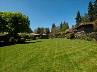 "Photo 10: 1239 235 KEITH Road in West Vancouver: Cedardale Condo for sale in ""SPURAWAY"" : MLS®# V922481"