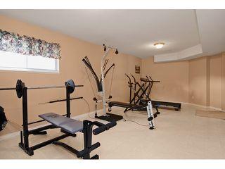 Photo 17: 11746 CREEKSIDE Street in Maple Ridge: Cottonwood MR House for sale : MLS®# V1108414